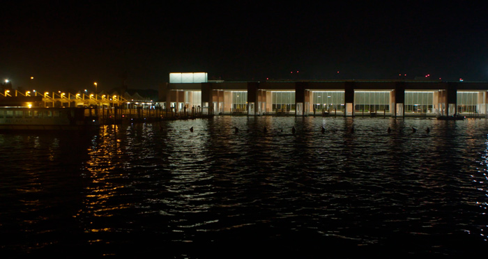 shooting Venice Airport - Native